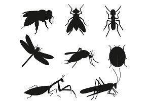Black silhouette Insects vector set