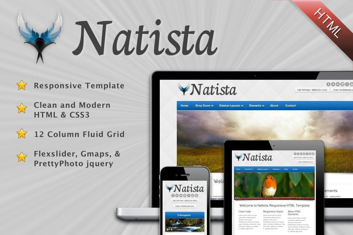 Natista - Responsive HTML Template ~ Website Templates ~ Creative Market