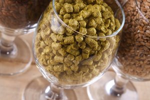 Malt and hops in glasses