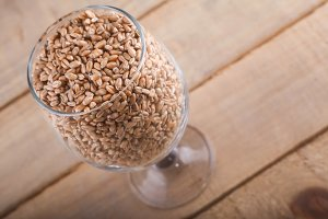 Wheat malt in a glass