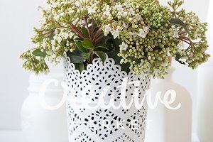 Bouquet of white flowers in vase