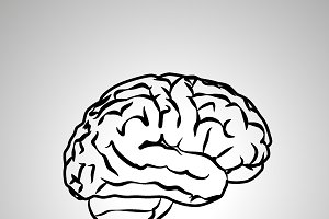 Human brain, black vector icon