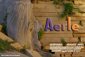 Aerle: foundation of companion sans