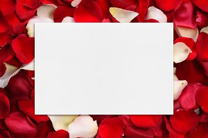 Blank paper on rose petals