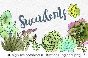Succulents Botanical Watercolors