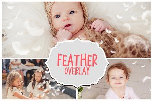 Feather Photo Overlays