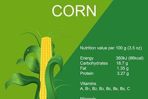 ripe corn cob, vector