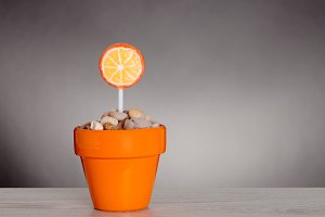 orange lollipop in a pot