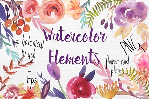set of watercolor  nature elements