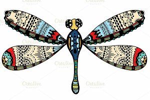 ornate dragonfly