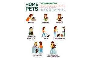 Infographic of caring about pets dog