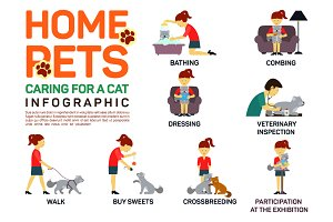 Infographic of caring about pets cat