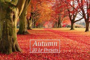 20 Autumn Lr Presets