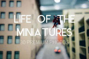 Life of the Miniatures 30 HQ Photos