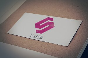 Selfem Logo Design Template