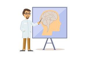 Doctor Showing Human Brain