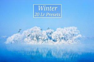 20 Winter Lr Presets