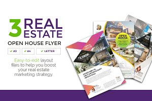 3 Clean Real Estate Flyer Vol 3