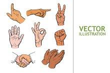 Drawn hands. A set of hands