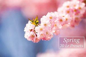 20 Spring Lr Presets