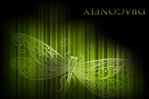 vector background with dragonfly and