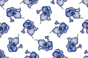 Floral iris pattern