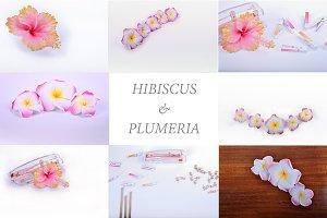 HIBISCUS & PLUMERIA STYLED STOCK