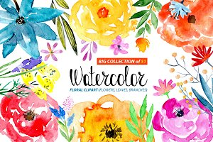 51 Watercolor floral elements