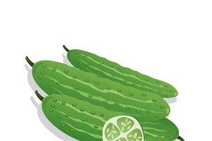 ripe cucumber cut segment