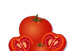 tomato, vector
