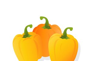 yellow pepper, vector