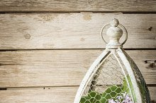 flowers in a vase in a cage for birds. on a wooden background