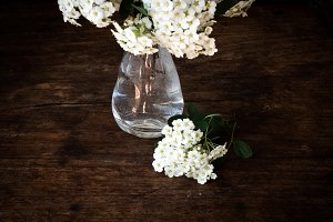 flowers in a vase  on a wooden background