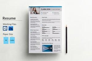 Resume Template | V015