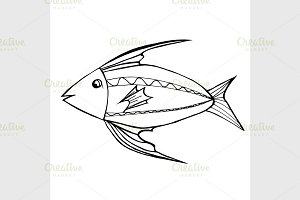 Hand Drawn Fish