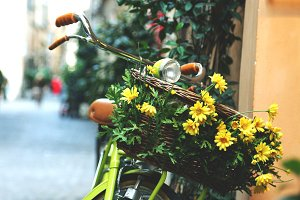 Bycicle with flowers