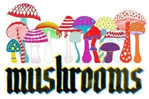 Set of 14 mushrooms