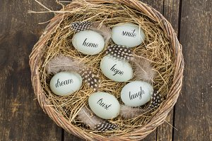 Eggs with messages