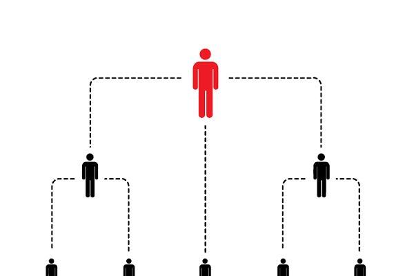 Hierarchy of company scheme