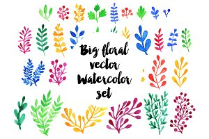 Big watercolor floral vector set