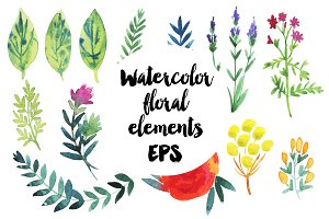 Vector watercolor flowers and leaves