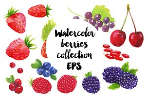 Watercolor vector berries set