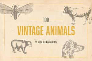 100 Vintage Illustrated Animals