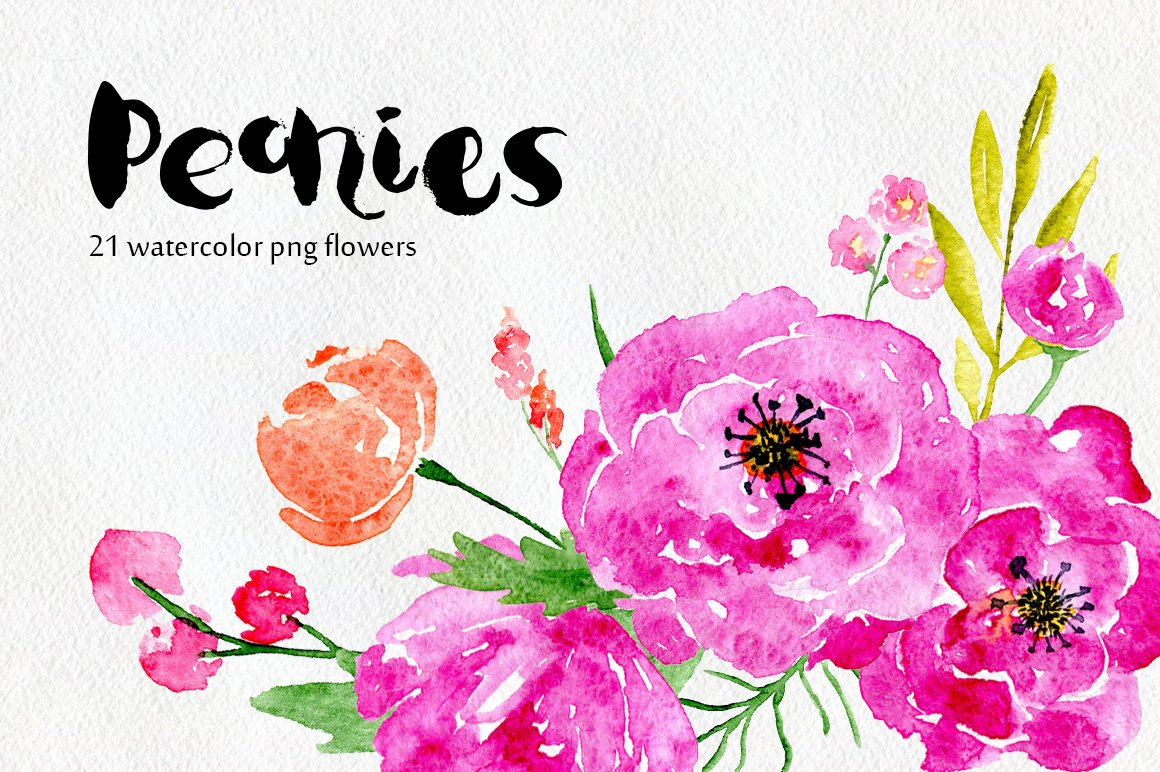 Watercolor Flowers Peony Floral Set Graphics Creative Market