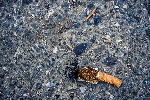 Cigarette Butt (Photo)