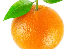 One isolated orange fruit