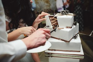 bride and groom is cutting cake