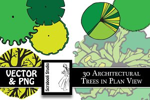 30 Architectural Trees