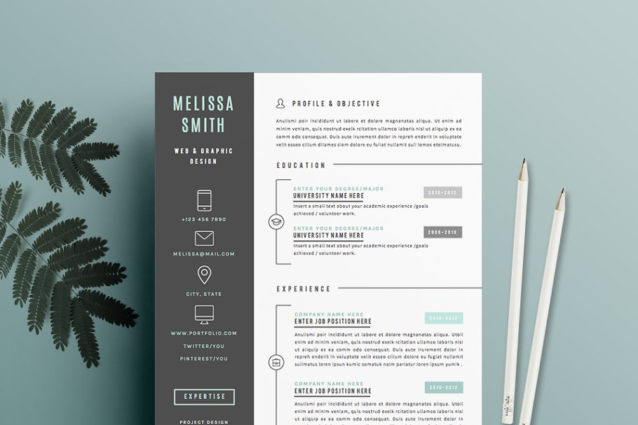 a  - Awesome iconic resume template