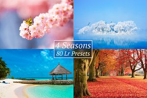 [30% OFF] 4 Seasons Lr Presets